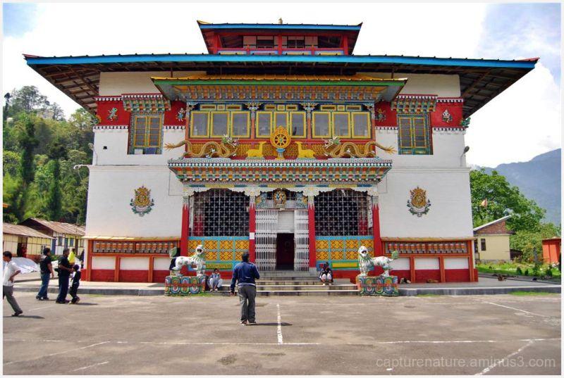 sikkim buddhist Phodong Monastery