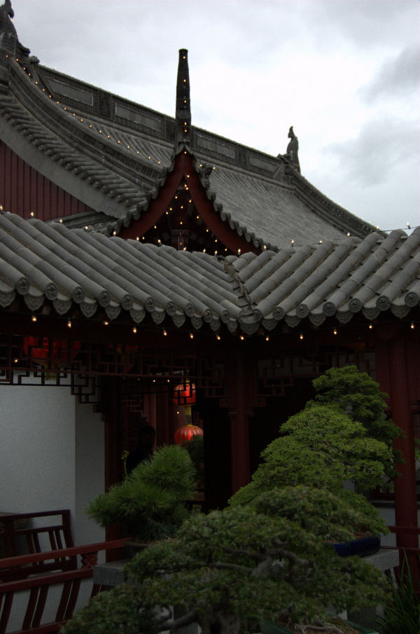 Chinese garden of montreal 2