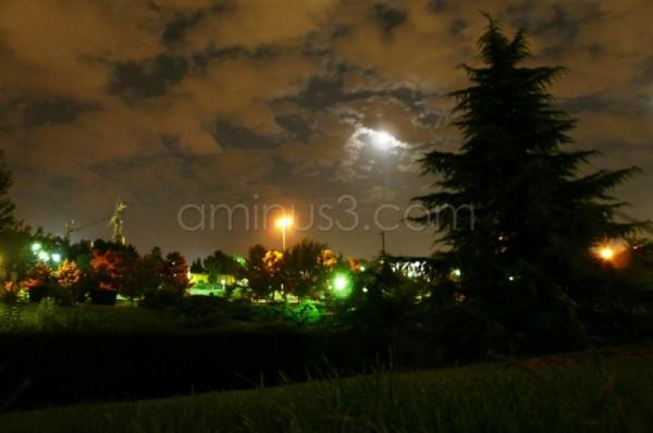 boostane goftegoo parks iran tehran trees