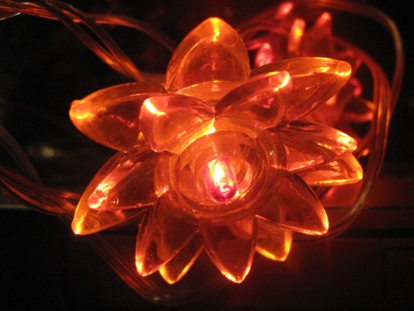 Christmas decoration flower