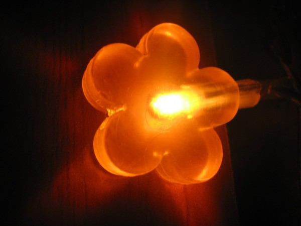 decoration orange light flower