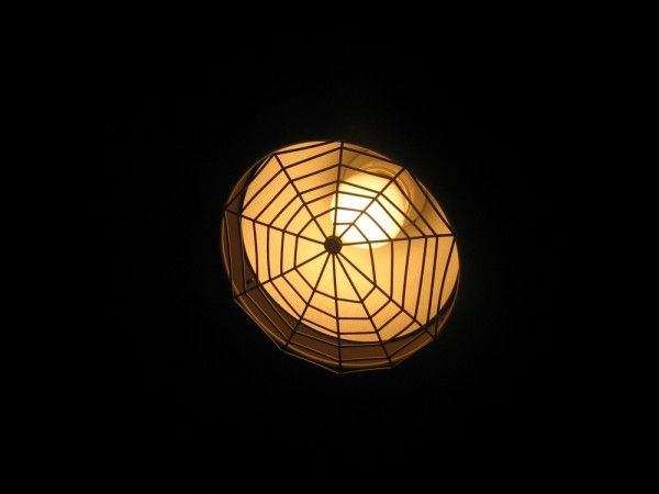 light spiderweb bulb darkness