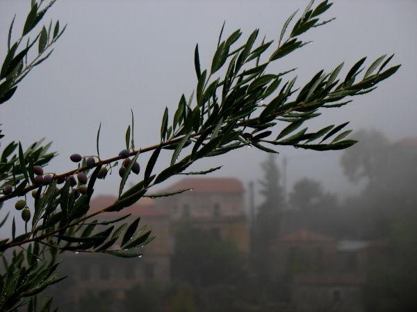 mist mani Greece Peloponnese