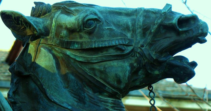 statue horse head