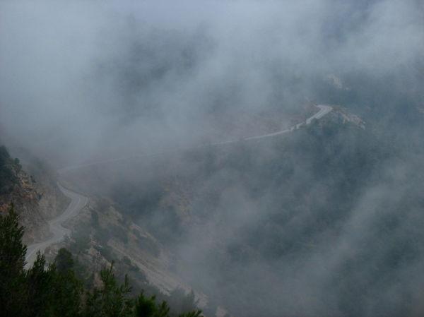 Mist fog road