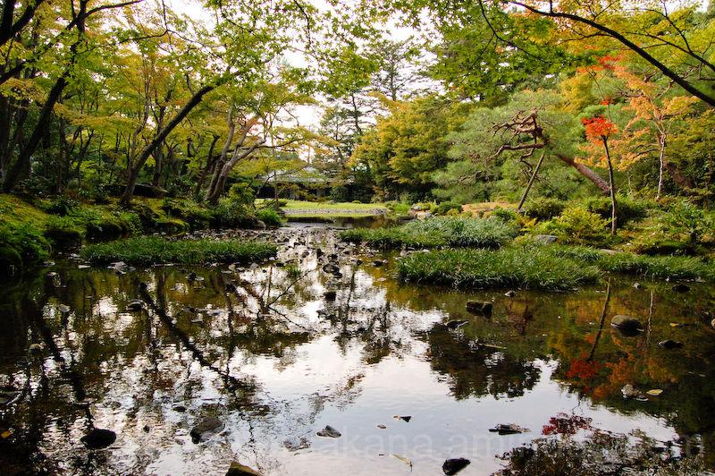 japanese garden, murian