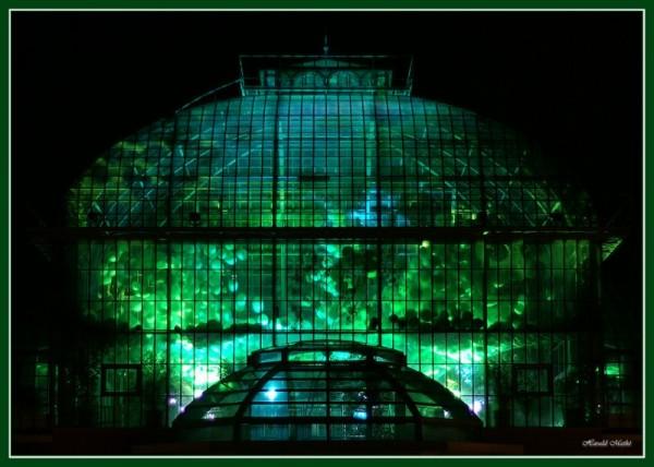 entrance, Palmengarten, luminale
