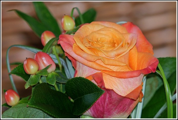 flower_5