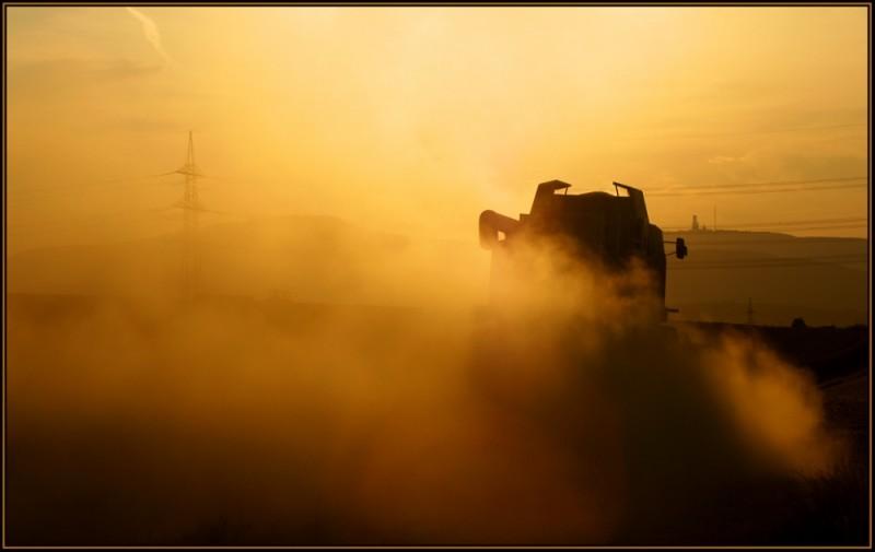 dust in the back light