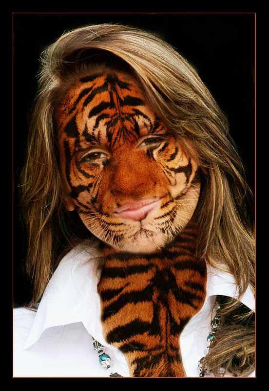 Tiger-Kathi