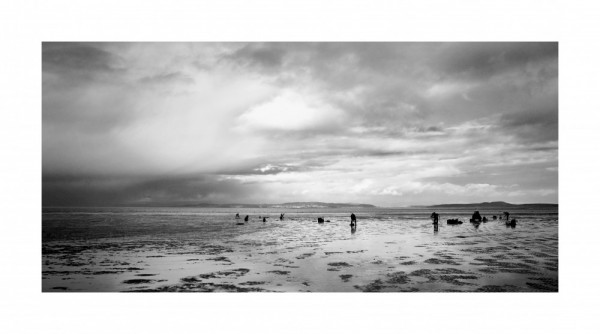 Morecambe Bay Cockle Pickers