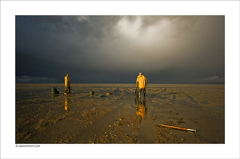 Morecambe Bay Cockle Pickers #4