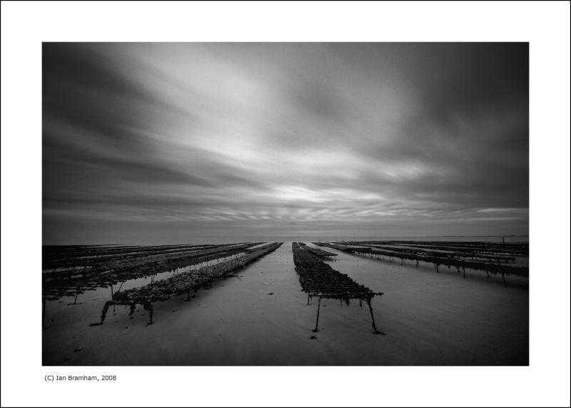 Oyster Beds, Île de Ré