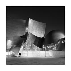Walt Disney Concert Hall, Los Angeles #1