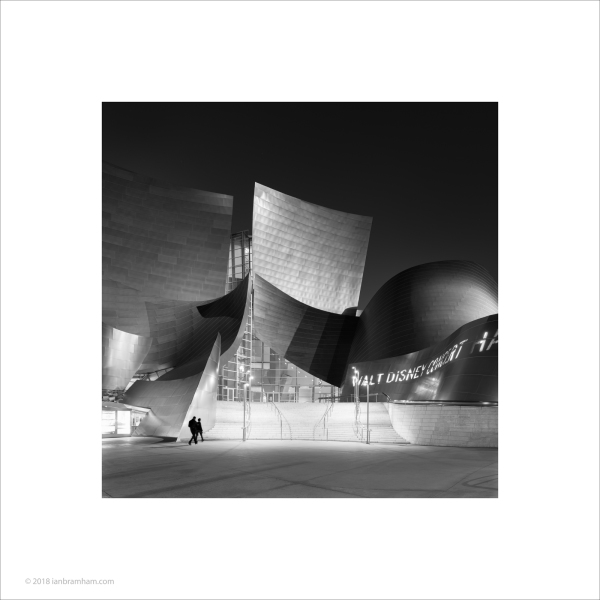 Walt Disney Concert Hall, Los Angeles #1
