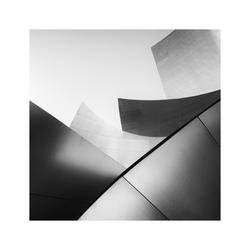 Walt Disney Concert Hall, Los Angeles #3