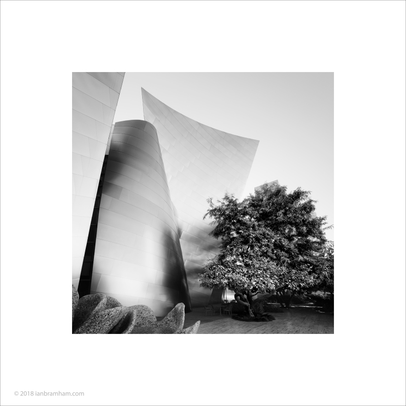 Walt Disney Concert Hall #6