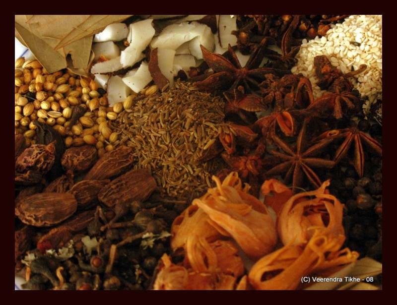 indian spices - family photo !