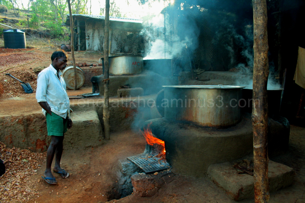 katkari making kat
