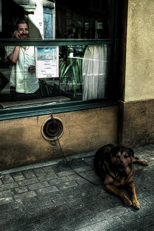 lyon france phone people dog photoshop