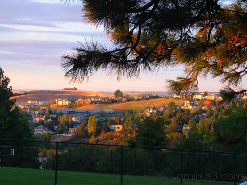 McEachern View