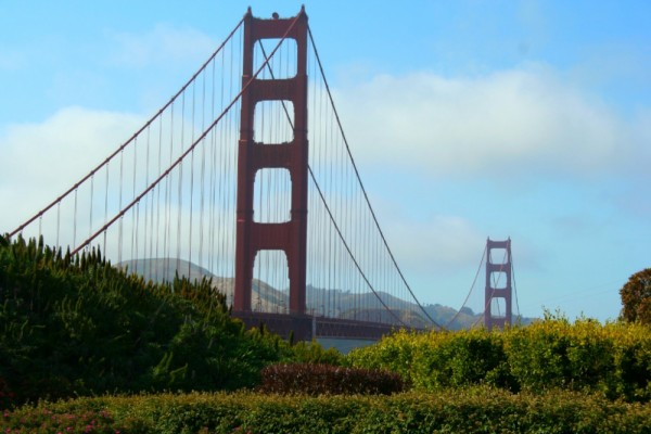 More Golden Gate