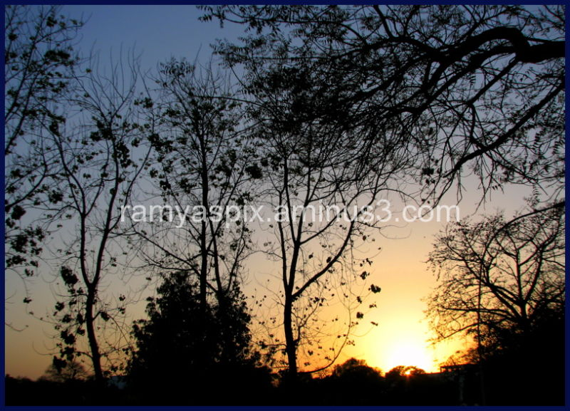 Beautiful dusk in the fag end of a Delhi winter