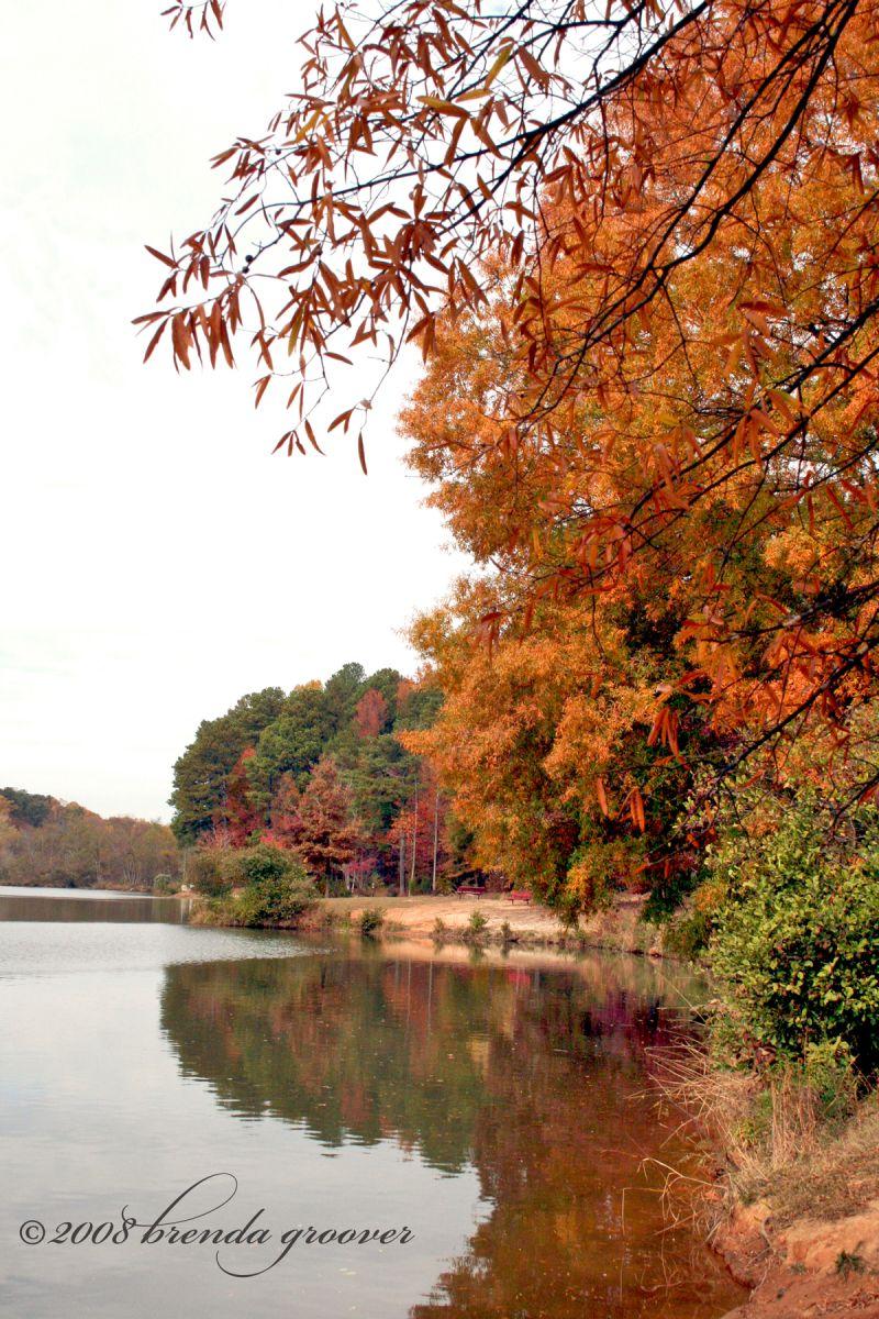 Fall Day