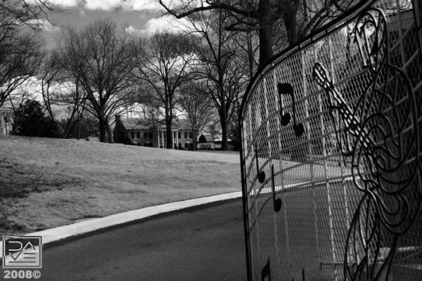 Graceland III