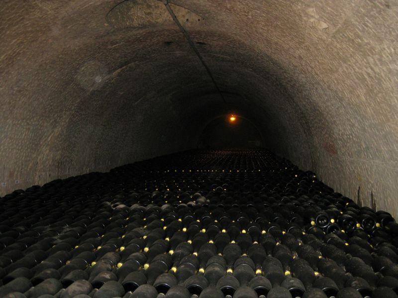 Champagne cellar in Reims, August 2009