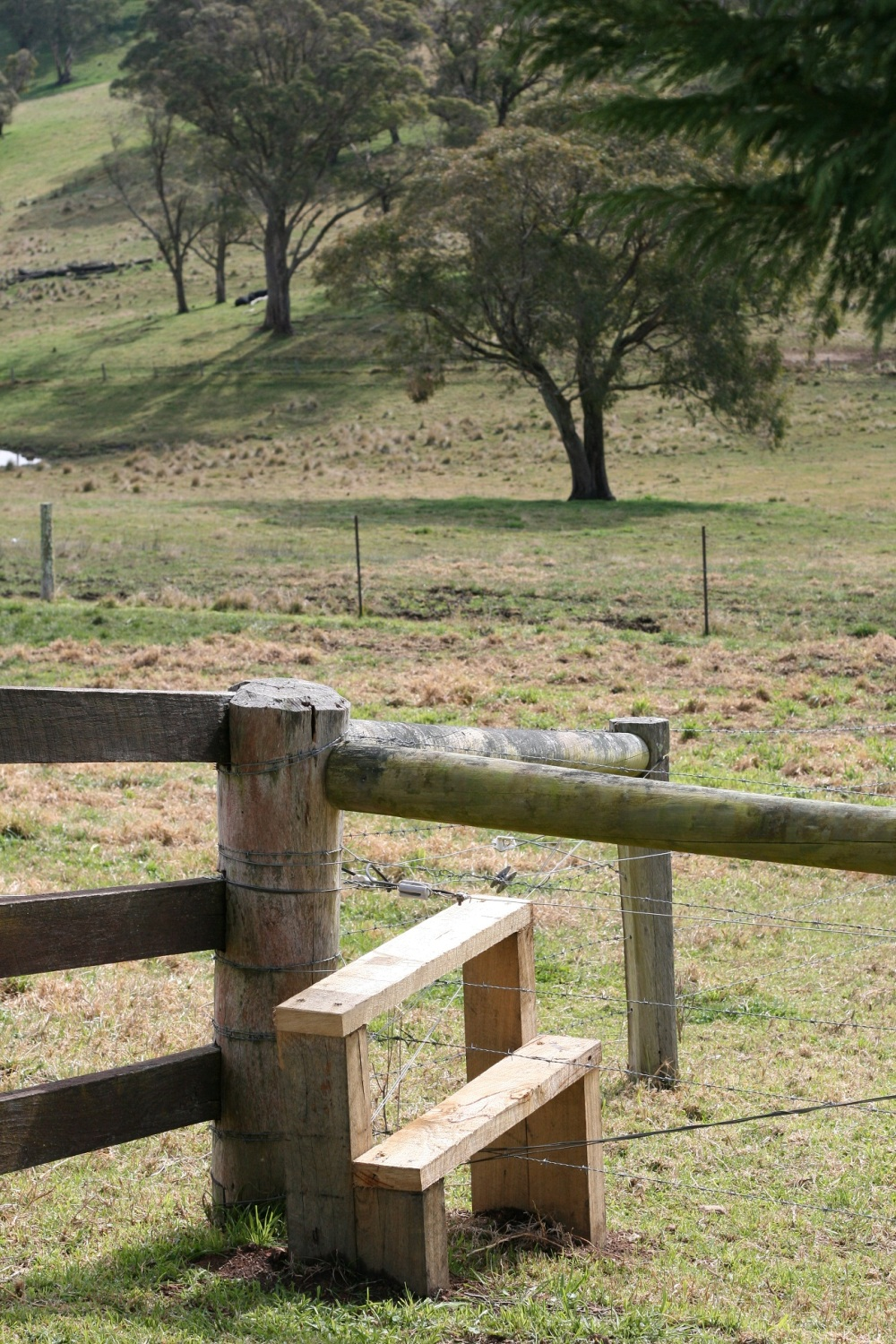 Southern Highlands, August 2011