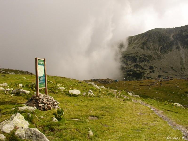 fog wall (Mt Retezat 03)