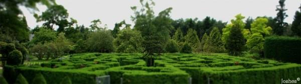 A-Maze-ing Miniature