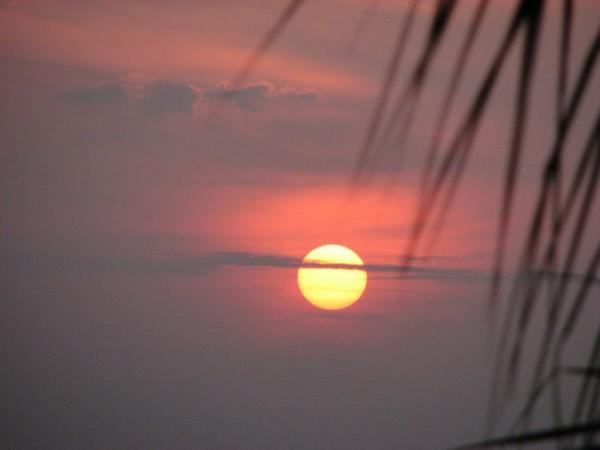"""""""Me rises""""-the sun"""