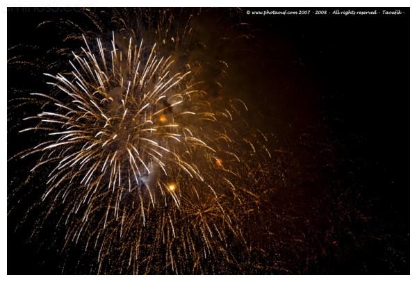 Fireworks France National Day - 07/14/08  - Paris