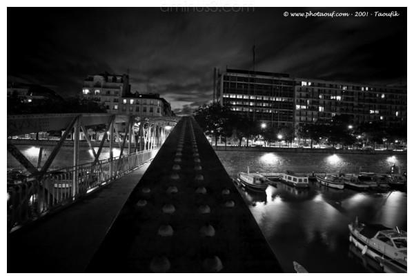 Black and White perspective Arsenal bridge Paris