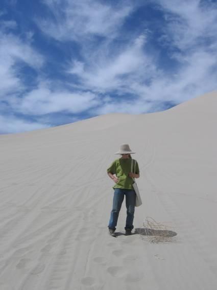 Mute Dune