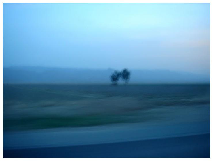 Untitled [667]