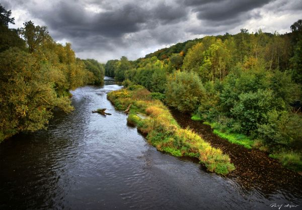 Autum Starts ~ Ruhr River
