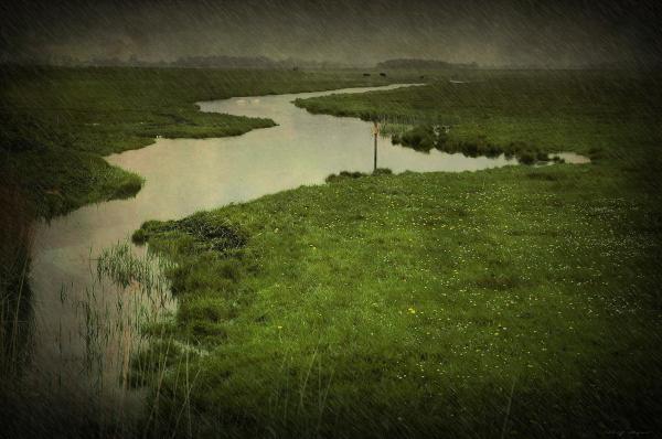 Rainy Friesland