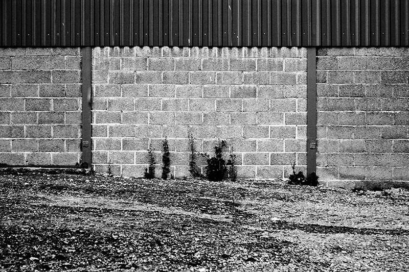 wall, B&W, bricks, farm