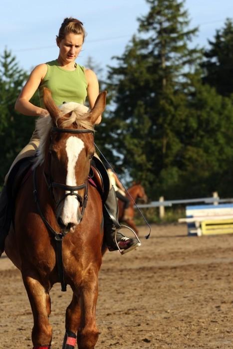 Horseback riding at Niitvälja