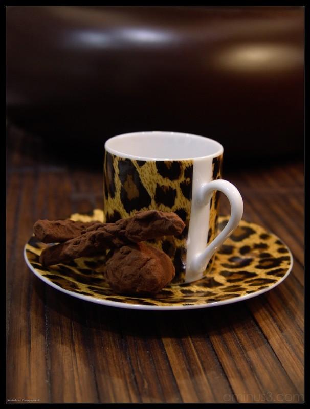 chocolat maison, nicolas ernult