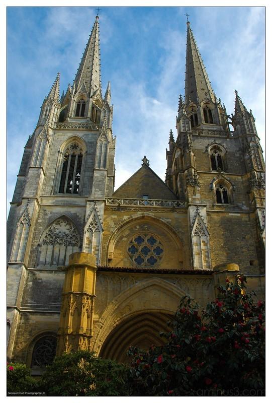 cathedrale de bayonne, nicolas ernult