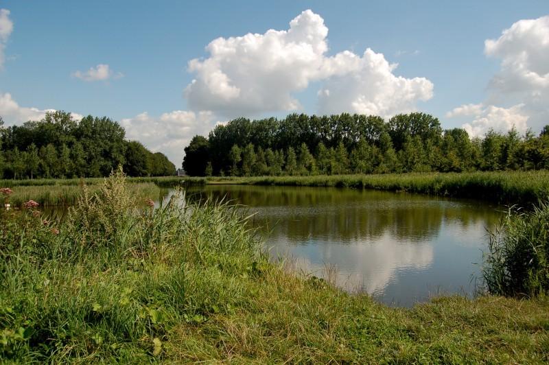 Little lake not far from Beloeil Castel