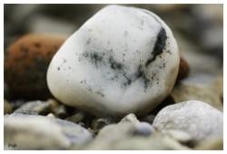 Cailloux blanc