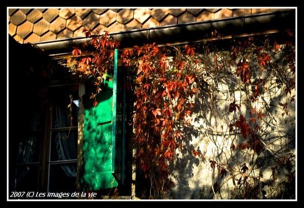 Les couleurs de l'automne #3