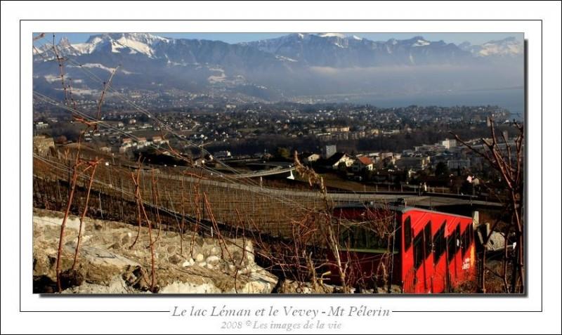 Vue sur les vignes de Chardonne. (Suisse)
