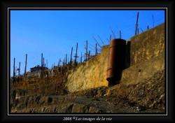 Mur de soutènement pour la vigne en étage !