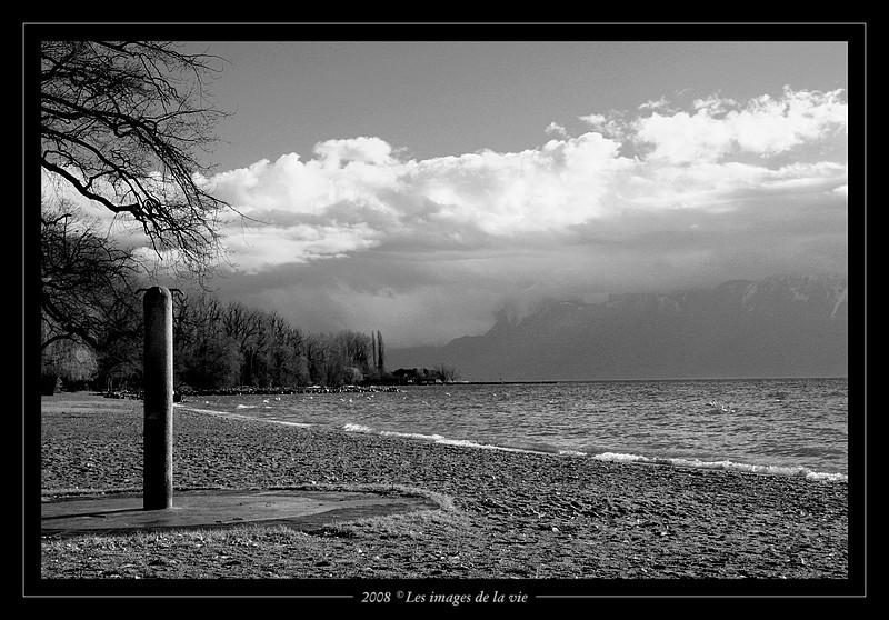 Plage de Vidi, Lausanne. Suisse